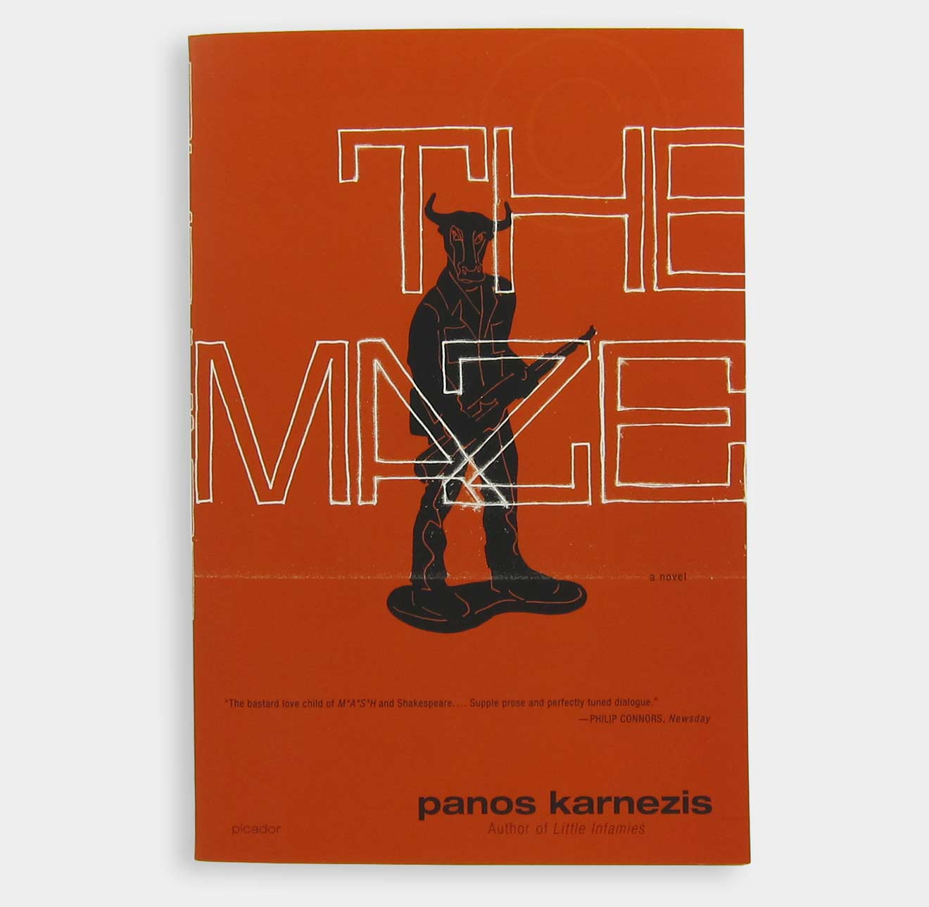 The Maze book cover